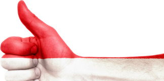 austria, flag, hand
